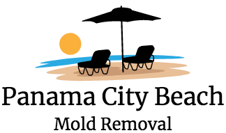 Panama City Beach Mold Removal & Testing